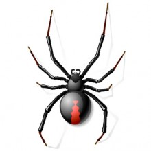 Eek! A spider! – How to lose your fear of search engines and write web copy that sells